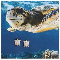 Silver Turtle Post Earrings