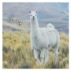 Silver Llama Post Earring