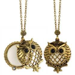 Antiqued Owl Magnifying Locket Necklace